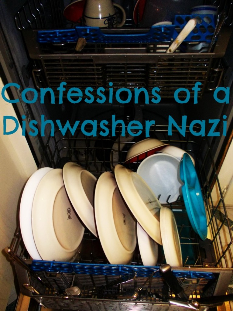 Dishwasher Pet Peeves