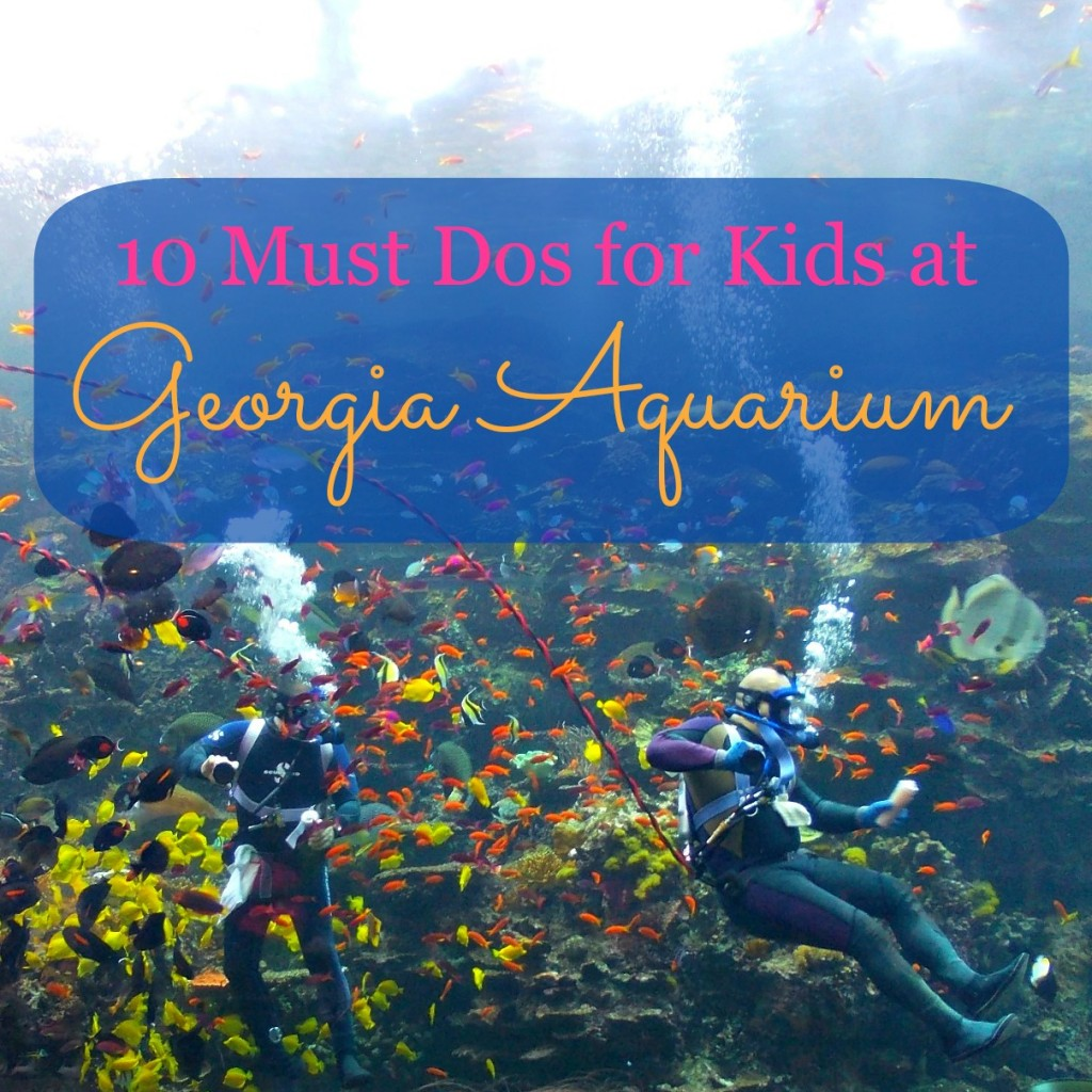 Georgia Aquarium Must Dos Kids