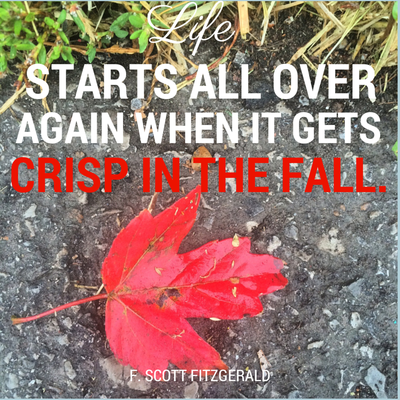 Fall Glory Quote F Scott Fitzgerald