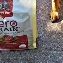 Paws Up Review Zero Grain Dog Food Rachael Ray