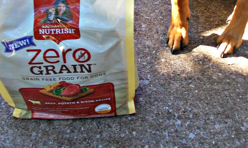 Recommended Dog Food For Puppies