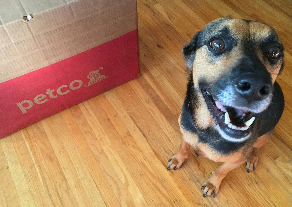Petco Repeat Delivery service