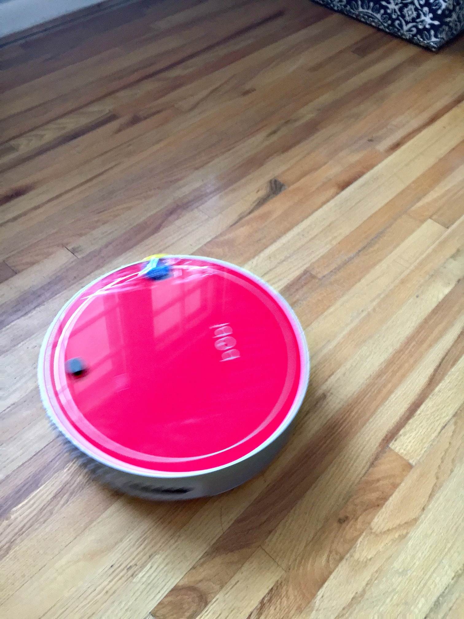 Best Pet Vacuum