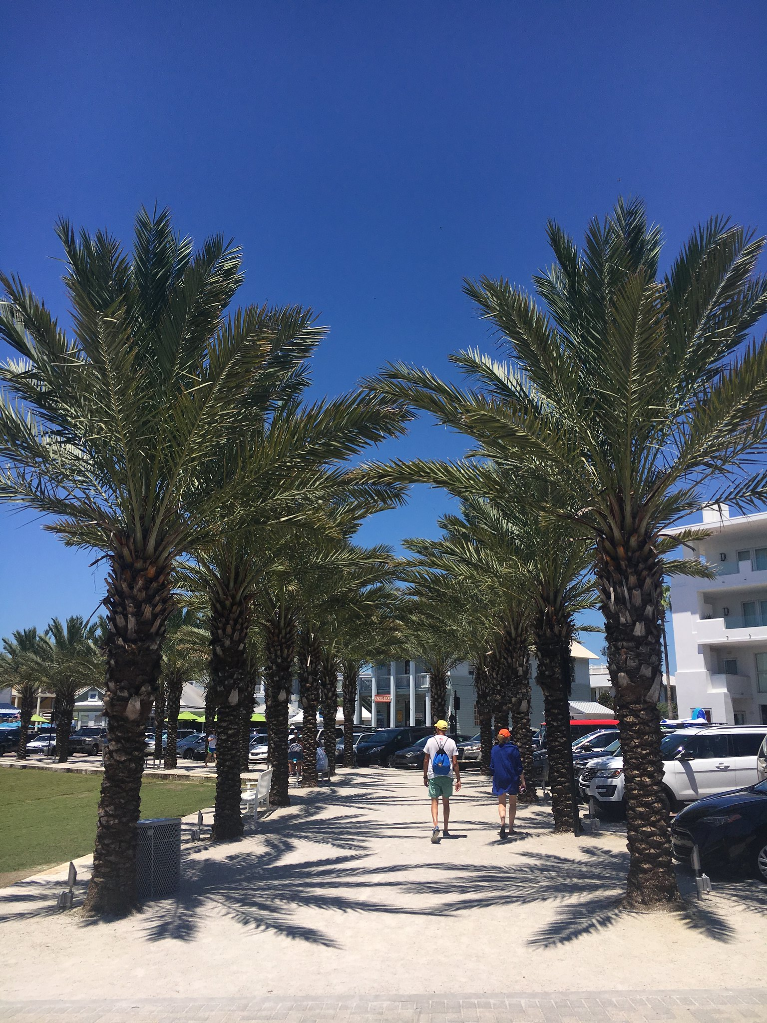 6 Ways I Saved Money on Our 30A Beach Vacation   Blonde ...