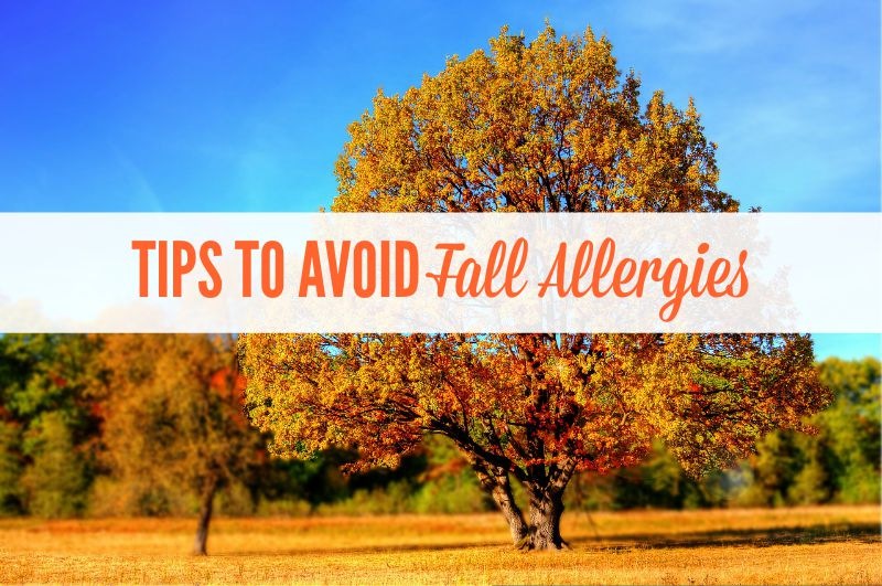 dealing with fall allergies blonde mom blog